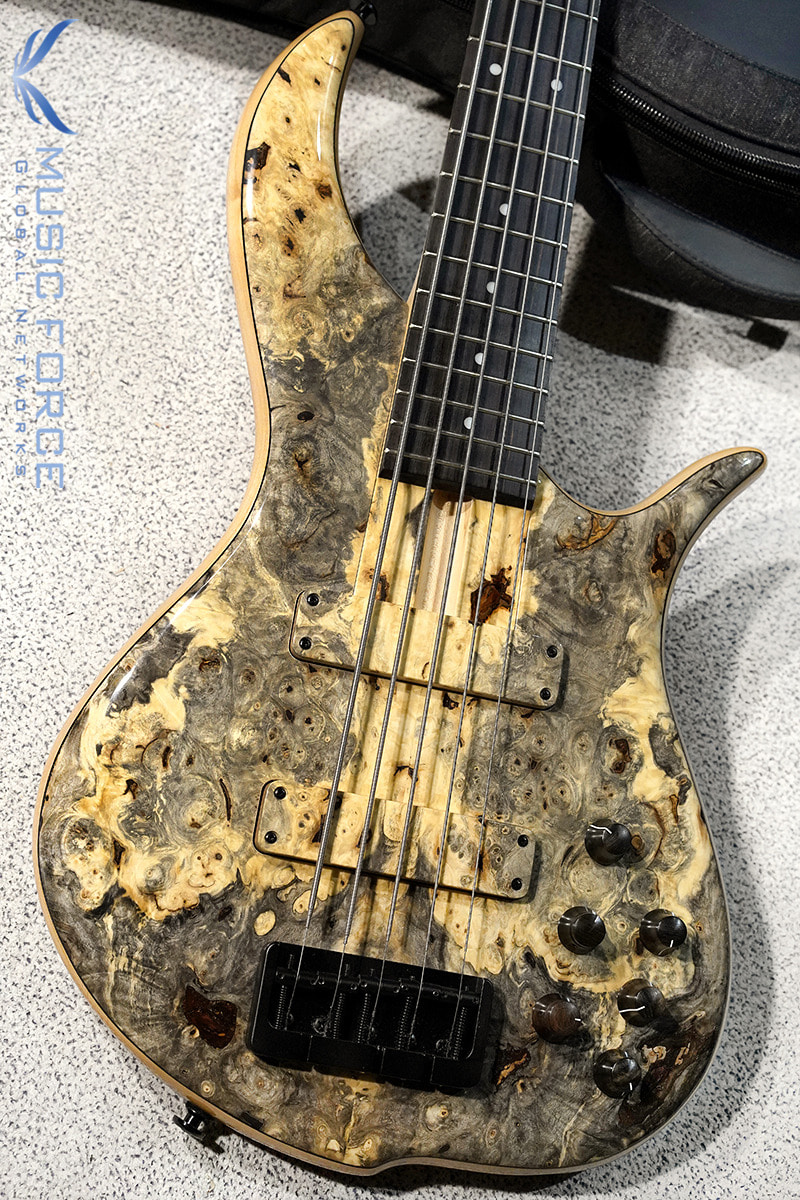 F-Bass BN5 Buckeye Burl Top w/Macassar Ebony FB & Black HW(2019년산/신품)